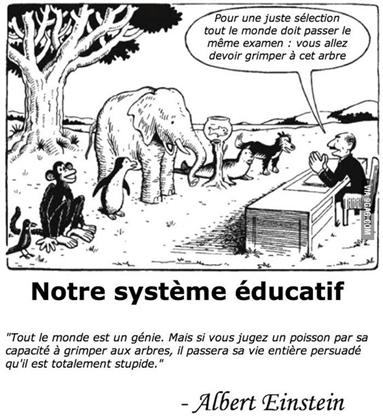 10Positif : Notre système éducatif (humour)
