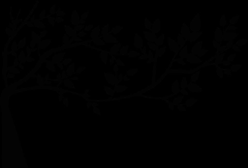 Logo pleine conscience